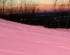 The Mysterious Pink Snow